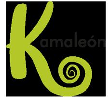 Zona kamaleon - Branding